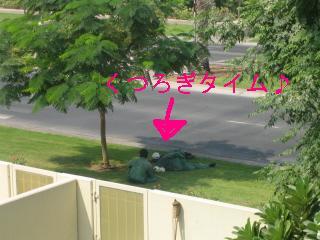 f0115107_18424118.jpg