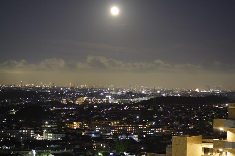 moonlit scene_e0061613_2213127.jpg