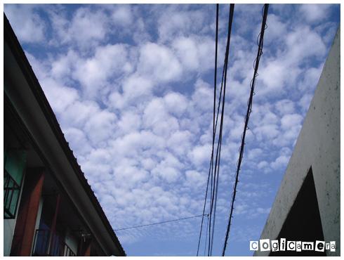 路地で見上げたうろこ雲_f0127422_2381393.jpg