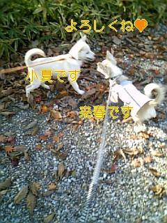 f0148927_18561432.jpg