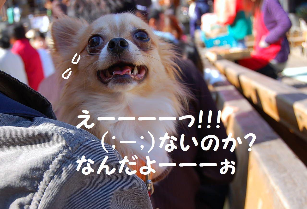b0112758_1761167.jpg