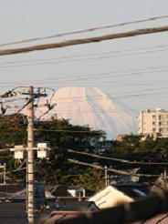 台風翌朝_f0139963_78129.jpg