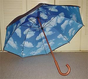 晴れ男が梅雨を楽しむお気に入りの傘_c0137404_1815416.jpg