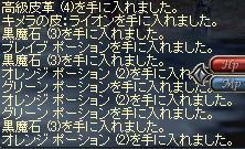 e0020239_2047872.jpg