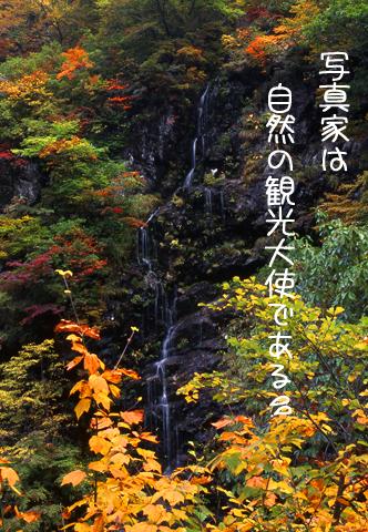 b0076646_19512048.jpg