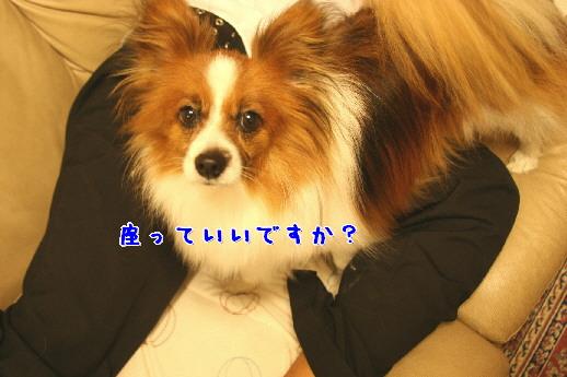 d0013149_23312114.jpg