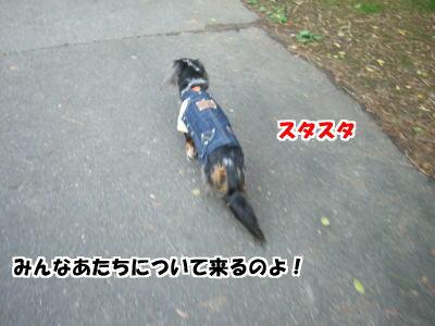 d0020869_16654100.jpg