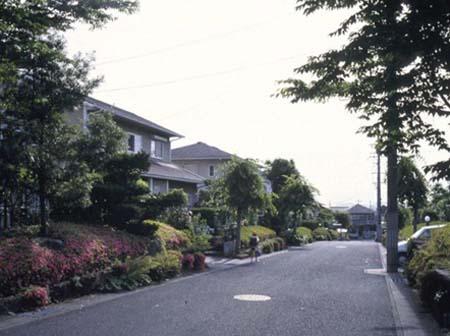 「戸建て住宅地の環境設計について」_c0083280_216052.jpg