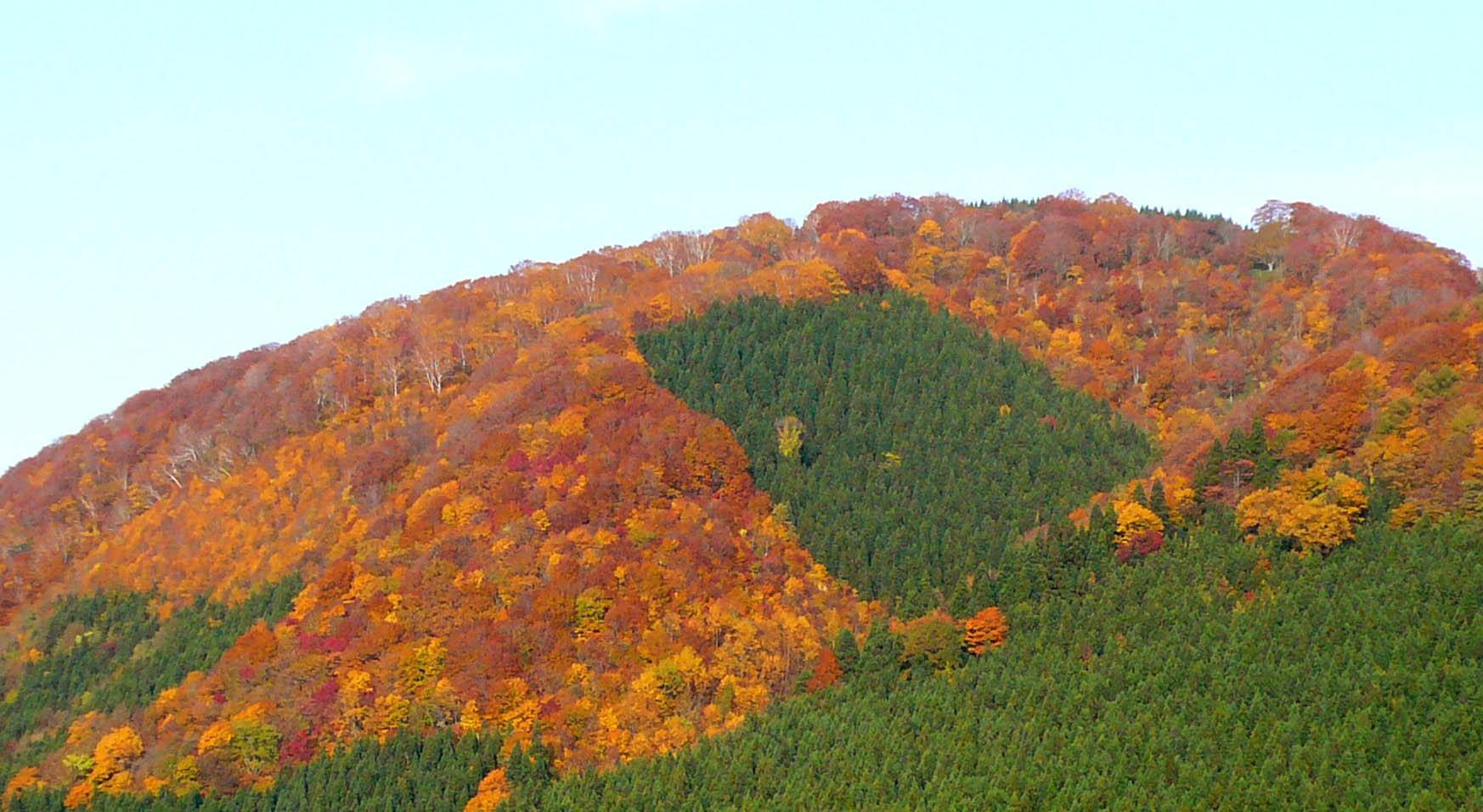 白神山系の紅葉_e0054299_9521360.jpg