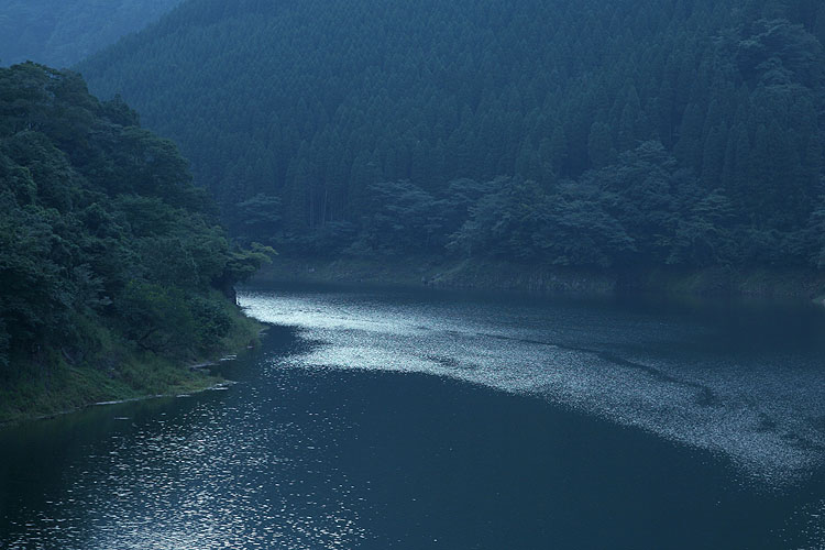 森の湖畔_a0062300_16461218.jpg