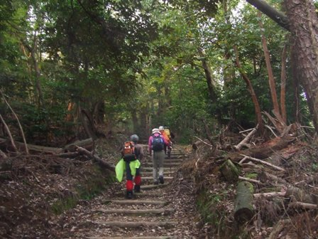 早朝ハイキング 旅伏山(456m) 参加5名_d0007657_11165653.jpg