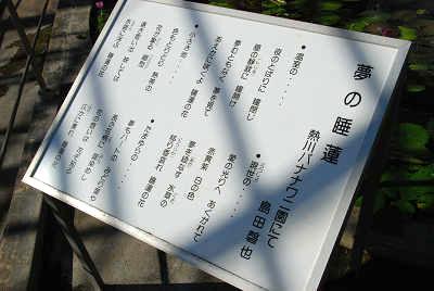 熱川バナナワニ園~睡蓮編_c0135079_2238512.jpg