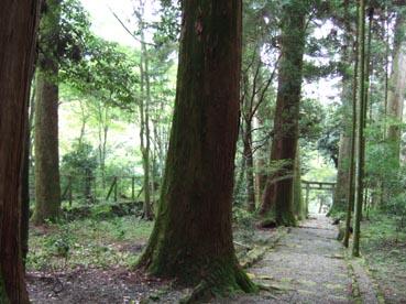 比叡山飯室のあたり_c0125114_15292275.jpg