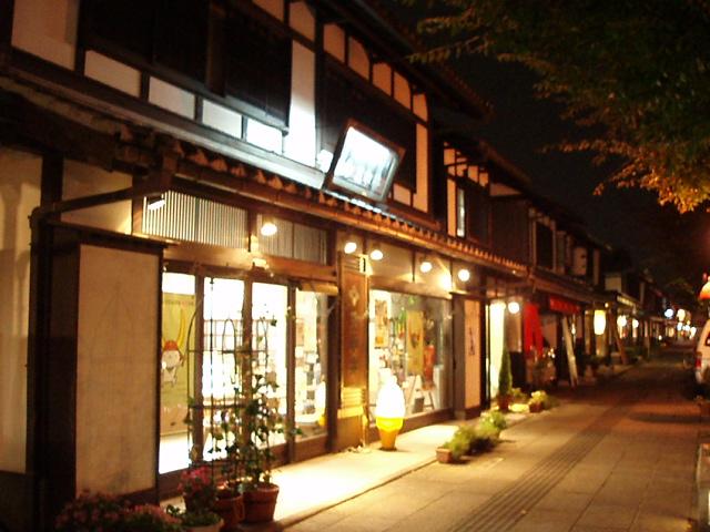 夜の彦根城下町_c0010936_124619.jpg