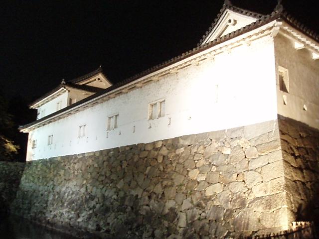 夜の彦根城下町_c0010936_127716.jpg