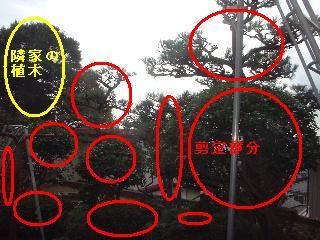f0031037_20252223.jpg
