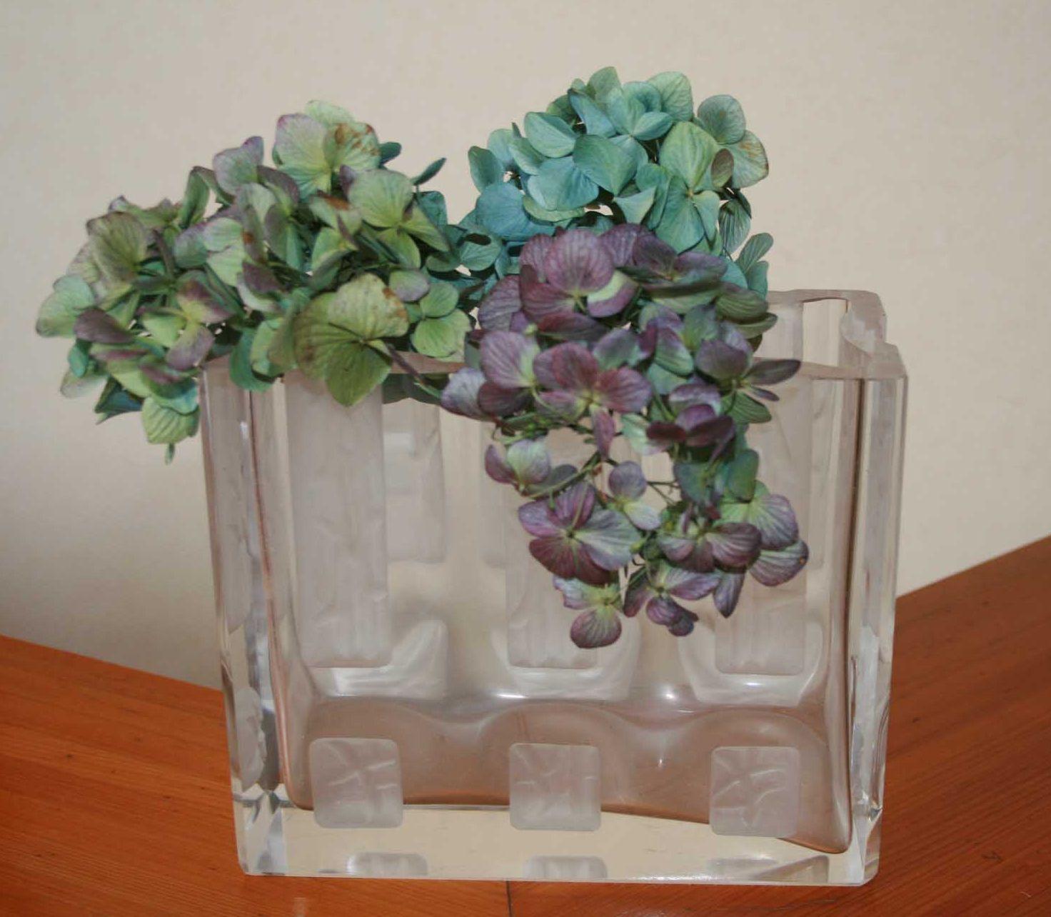 秋色紫陽花、秋色水無月♪~_e0082045_15583597.jpg