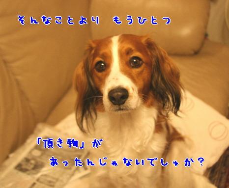 d0013149_1313677.jpg