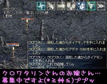 f0072010_1911283.jpg