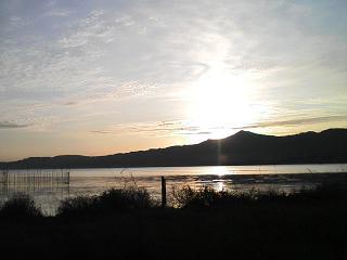 琵琶湖_c0010936_1014353.jpg
