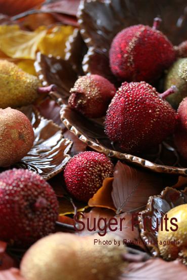 Suger Fruits_f0127281_16263981.jpg