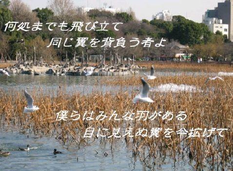 f0156895_2222696.jpg