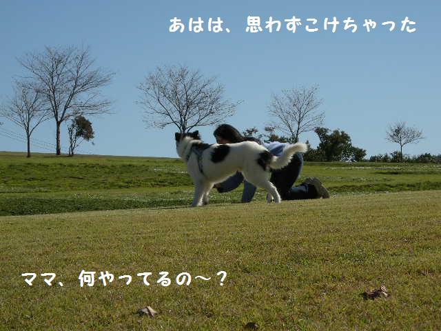 f0081100_22222997.jpg