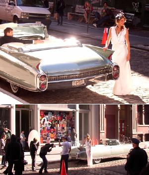 街角で白い妖精と遭遇_b0007805_14421745.jpg