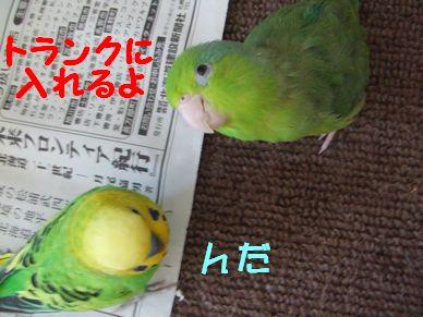 b0082757_1471094.jpg