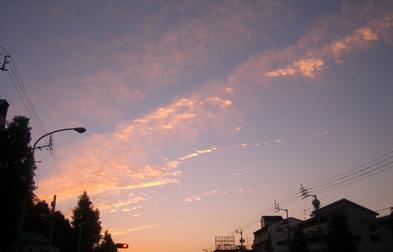 b0067598_2012910.jpg