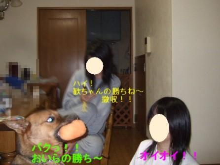 b0087400_105214.jpg