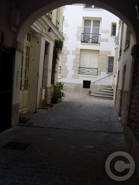 ■中庭のニャンコ(パリ)_a0008105_6472997.jpg