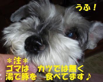 c0098501_21105250.jpg