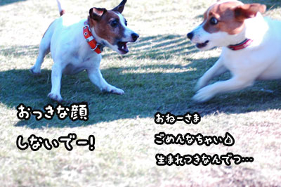 f0129214_11315636.jpg