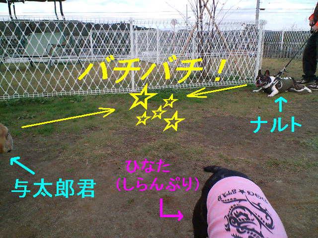 b0076733_9393288.jpg
