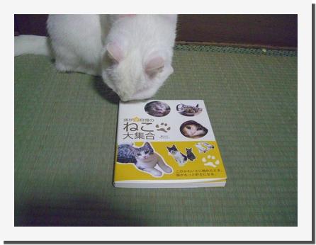 b0097145_0104310.jpg