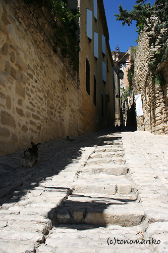 田舎の美しい小さな村々_c0024345_8535143.jpg