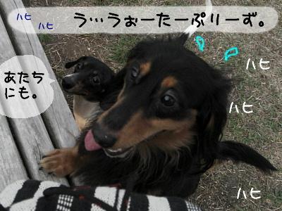 b0048649_22491340.jpg