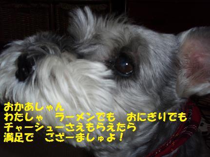 c0098501_17252323.jpg