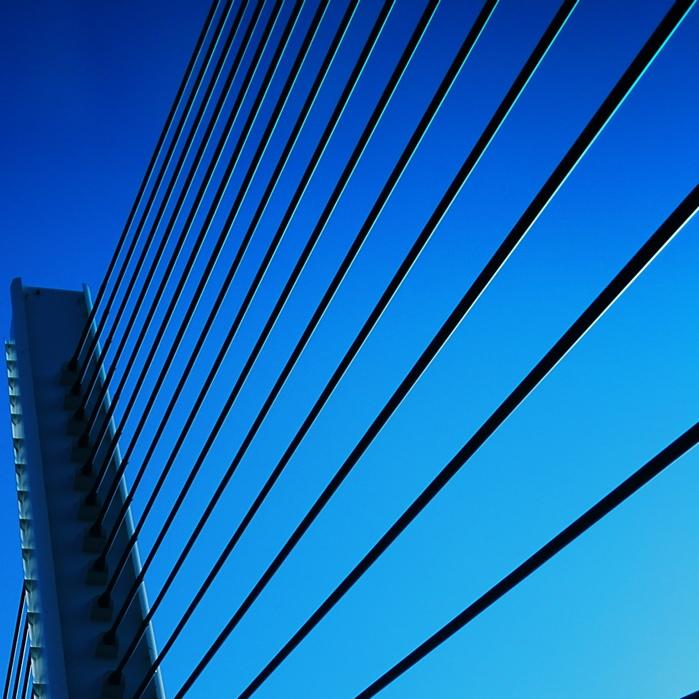 Blue Harp_c0127403_23132776.jpg