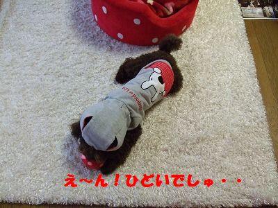 f0133510_17142686.jpg