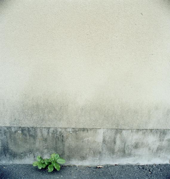 「伊豆の人」 沙絵_c0098759_16554411.jpg