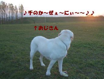 b0075609_23343122.jpg