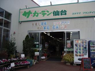 農園便り・専門店_c0063348_12523453.jpg