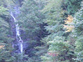 和歌山県清水の「香料理庵 紅葉(クレハ)」_e0002086_8552851.jpg