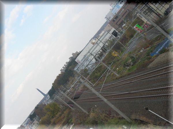 f0153450_16461660.jpg