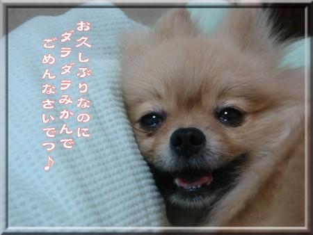b0078073_1726999.jpg