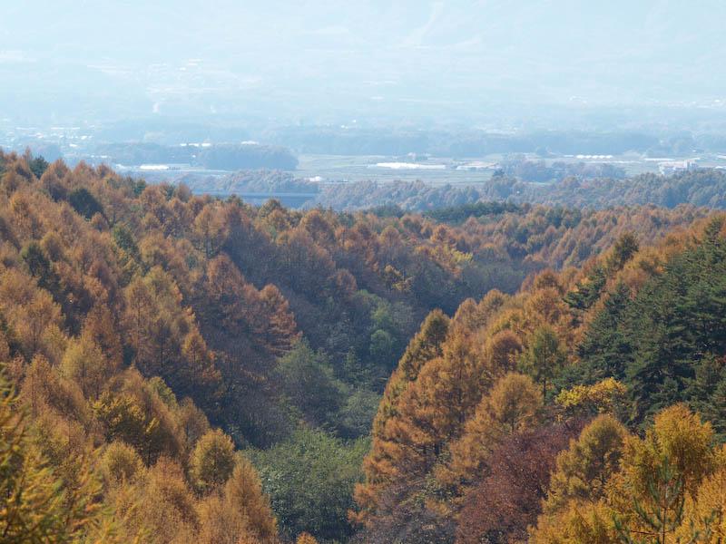 秋たけなわの富士見高原と原村_c0137403_1974411.jpg