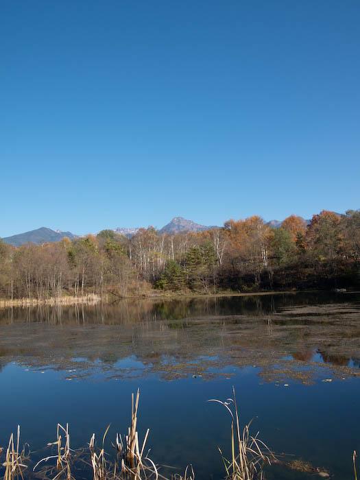 秋たけなわの富士見高原と原村_c0137403_198568.jpg