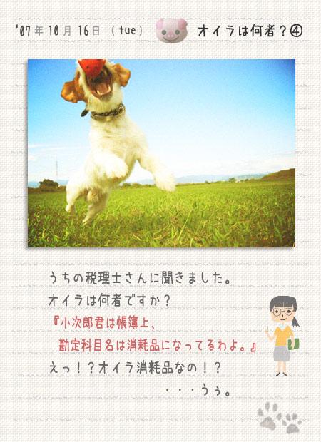 b0040323_4345175.jpg